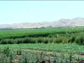 Tajikistan:      Agriculture in Tajikistan