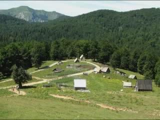 الجبل_الأسود:  Kolasin:      Biogradska Gora