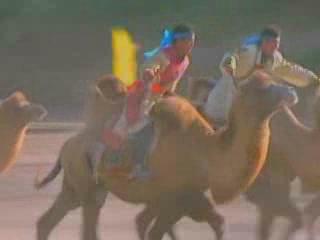内モンゴル自治区:  中国:      Camel Racing