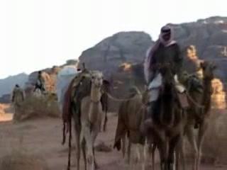Акаба:  Иордания:      Верблюжий маршрут по Вади Рам