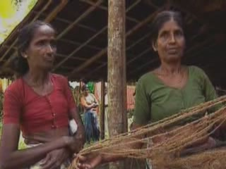 喀拉拉邦:  印度:  