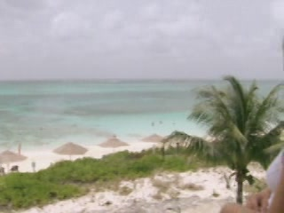 Turks and Caicos Islands:  グレートブリテン島:      Coral Gardens