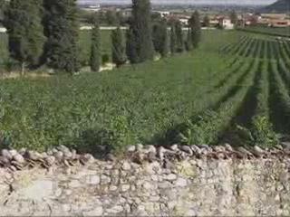 布雷西亚:  伦巴第:  意大利:      Corte Franca