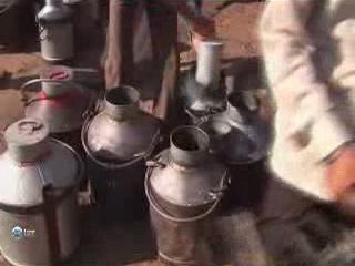 Джайпур:  Раджастхан:  Индия:      Молочный рынок в Джайпуре