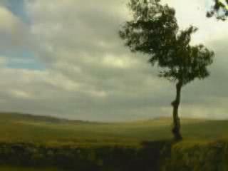 Англия:  Великобритания:      Дартмур