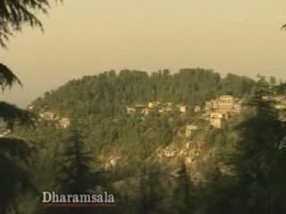 Химачал-Прадеш:  Индия:      Дхарамсала