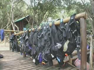 Ponta do Ouro:  モザンビーク:      Diving School Parque de Malongane