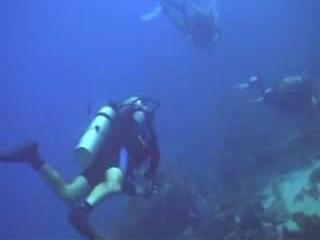 东帝汶:      Diving