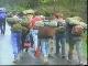 Экологический туризм в Беларуси