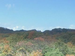 张家界市:  中国:      Eight Duke Mountain Nature Reserve