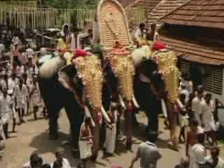 Images Elephant Festival in India entertainment