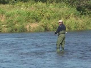 堪察加州:  俄国:      Fishing in Kamchatka