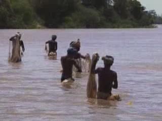 Керала:  Индия:      Рыбный промысел в Керале