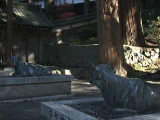 Мацумото:  Япония:      Храм Гофукудзи