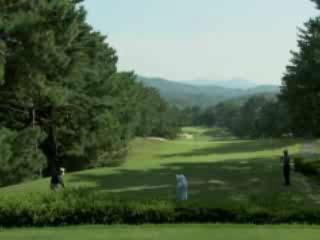 Fukuyama:  Japan:      Golf in Fukuyama