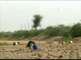 シンド州:  パキスタン:      ハイデラバード (パキスタン)