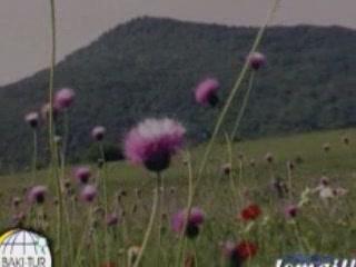 Азербайджан:      Исмаиллинский район
