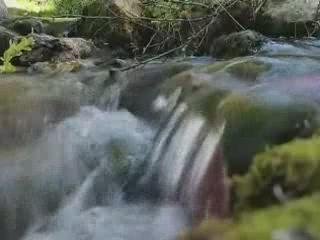 Солин:  Хорватия:      Река Жадро
