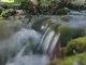 Река Жадро