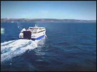 Австралия:      Остров Кенгуру