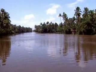 Керала:  Индия:      Заводи Керала