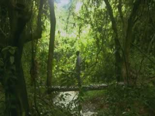 Burundi:      Kigwena Forest Nature Reserve
