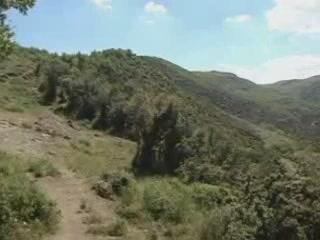 Vergina:  Greece:      Landscape Vergina