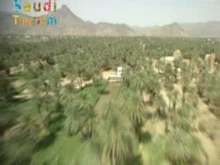 サウジアラビア:      Landscape