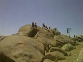 Ta'if:  Saudi Arabia:      Landscape of Taif
