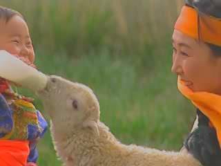 内蒙古自治区:  中国:      Life of Nomadic Mongols