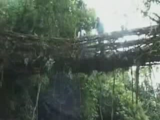 Meghalaya:  India:  