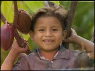 伯利兹:      Maya peoples