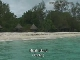 Misali Island