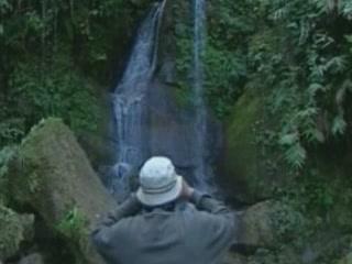 Аруначал-Прадеш:  Индия:      Национальный парк Намдапха