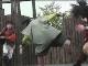 Ниндзя-шоу в историческом парке Ноборибецу Дате