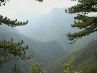 Босния и Герцеговина:      Реликтовый лес Перучица