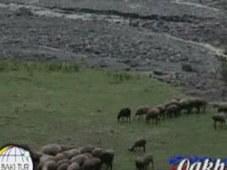 アゼルバイジャン:      Qakh Rayon