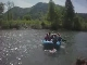 Rafting on the Kupa (克罗地亚)