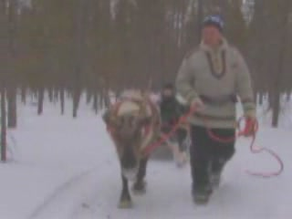Posio:  Lapland:  Finland:  