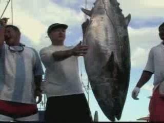 Сейшельские острова:      Рыбалка на Сейшелах