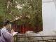 Цюйфу:  Китай:      Стелла храма Конфуция