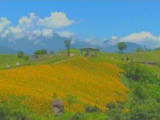 Taiwan:  中国:      Taiwan Landscapes