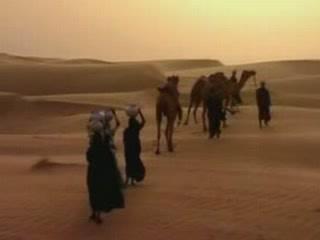 维基百科,自由的百科全书:  巴基斯坦:      Thar Desert in Pakistan