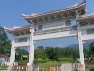 Xiamen:  China:      Tianzhushan Forest Park