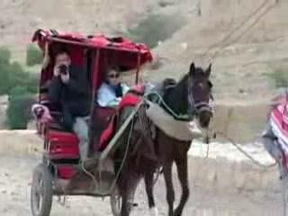 Maan:  Jordan:      Travel carts