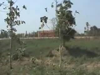 インド:      トリプラ州
