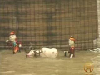 Hanoi:  Vietnam:      Water Puppetry in Hanoi