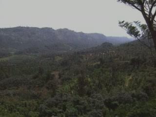 ケーララ州:  インド:      西ガーツ山脈