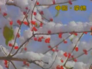 承徳市:  中国:  