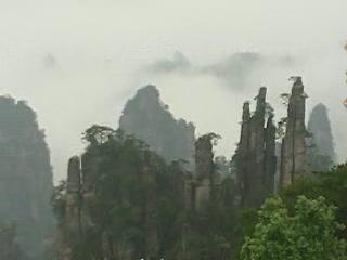 Zhangjiajie:  China:      Wulingyuan